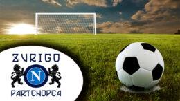 calcio NCZP